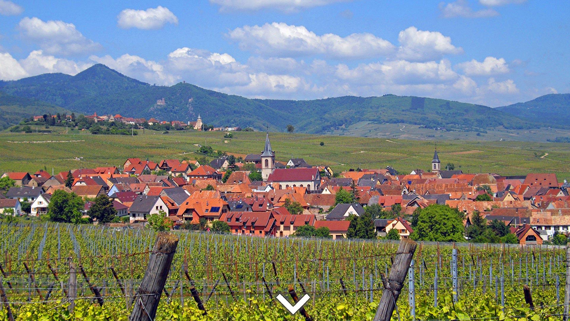 Chambres Hôtes De Charme En Alsace Sur La Route Des Vins Proche ...