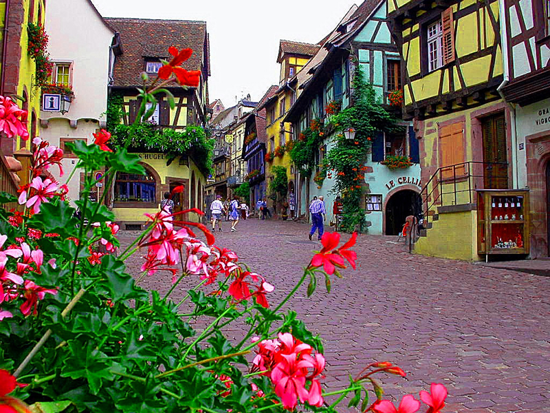 tourisme et loisirs gallery categories charming bed and breakfast in alsace on the wine. Black Bedroom Furniture Sets. Home Design Ideas
